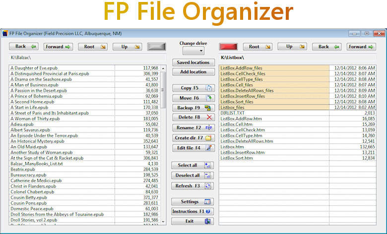 FP File Organizer screenshot